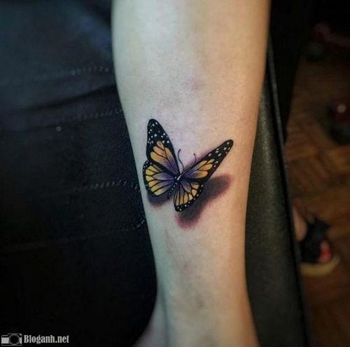 hình xăm bướm cho nam, hình xăm bướm đẹp cho nam