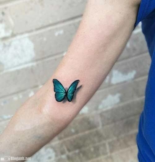 xăm bướm 3D, hình xăm 3D
