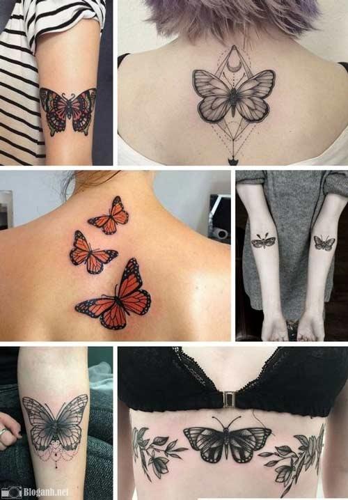hình xăm bướm đẹp, tuyển tập hình xăm bướm đẹp