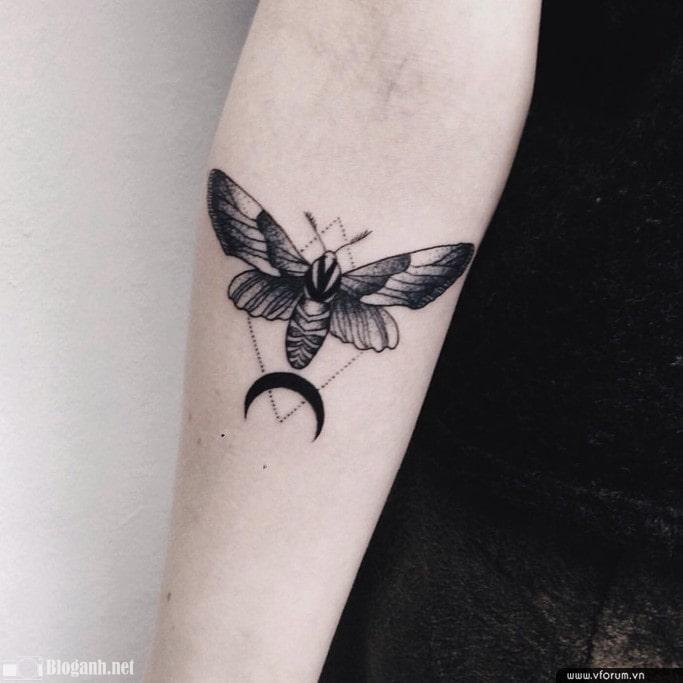 hình xăm bướm đẹp, hình xăm bướm đẹp và ấn tượng