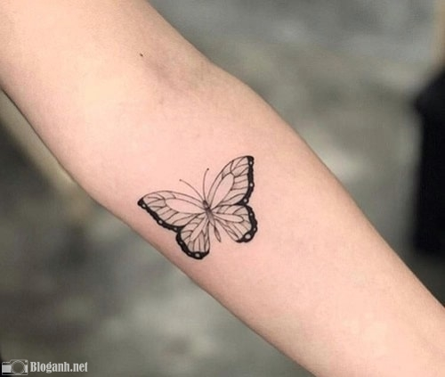 hình xăm đẹp, hình xăm bướm ở cánh tay, hình xăm bướm ấn tượng