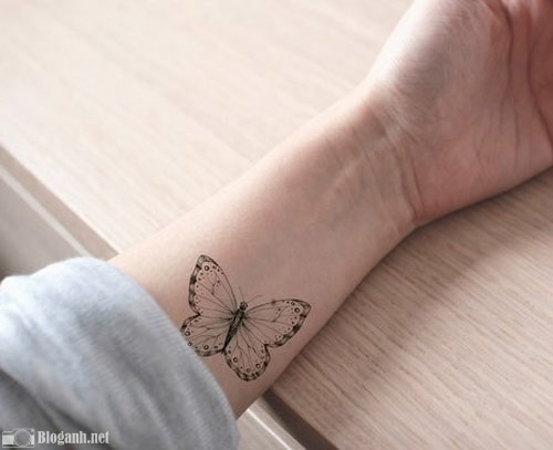hình xăm bướm đẹp cánh tay, xăm cánh tay cho nữ