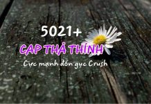 cap-tha-thinh-thumb