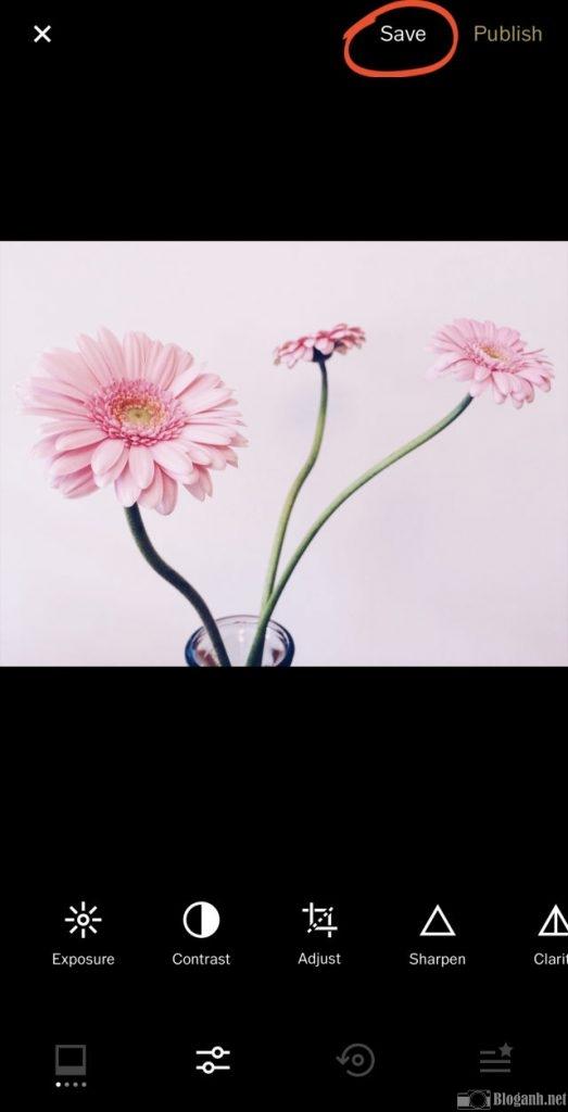 cách chỉnh sửa bằng bộ lọc trên VSCO, ảnh hoa, chỉnh ảnh hoa VSCO