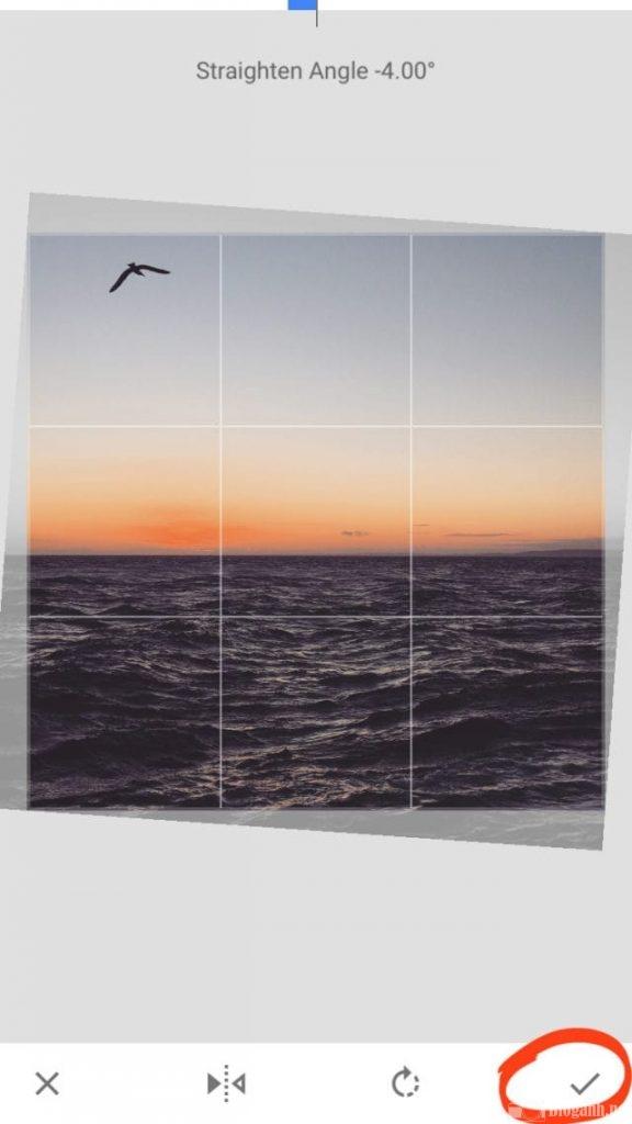 bầu trời, cánh chim, công cụ chỉnh ảnh