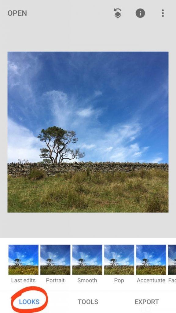chỉnh ảnh, bầu trời, cây