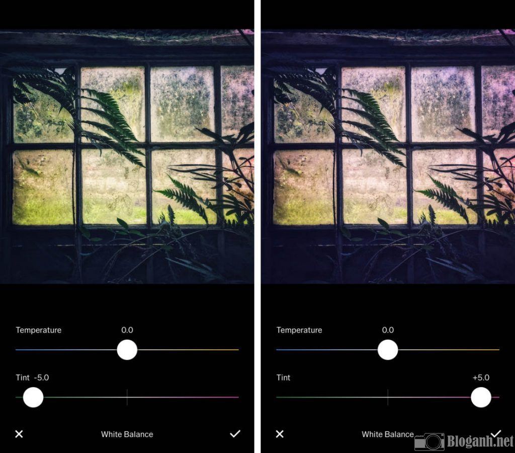 cách chỉnh ảnh VSCO, cách chỉnh tone màu ấm, cách chỉnh màu ấm VSCO