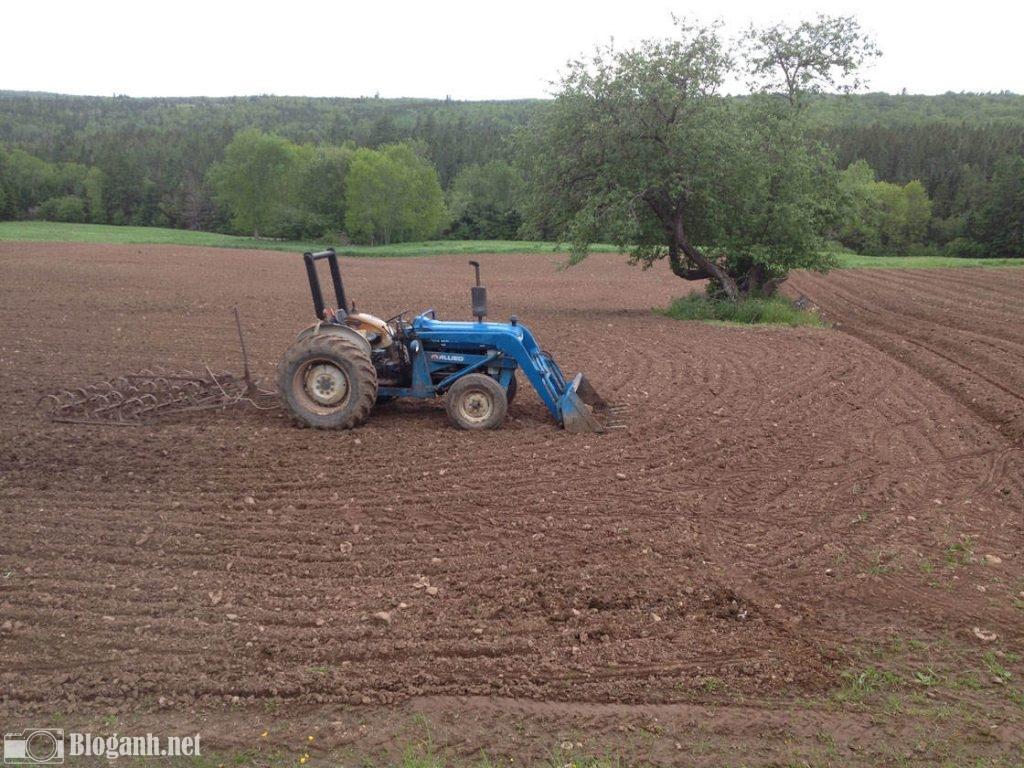 máy kéo, cánh đồng