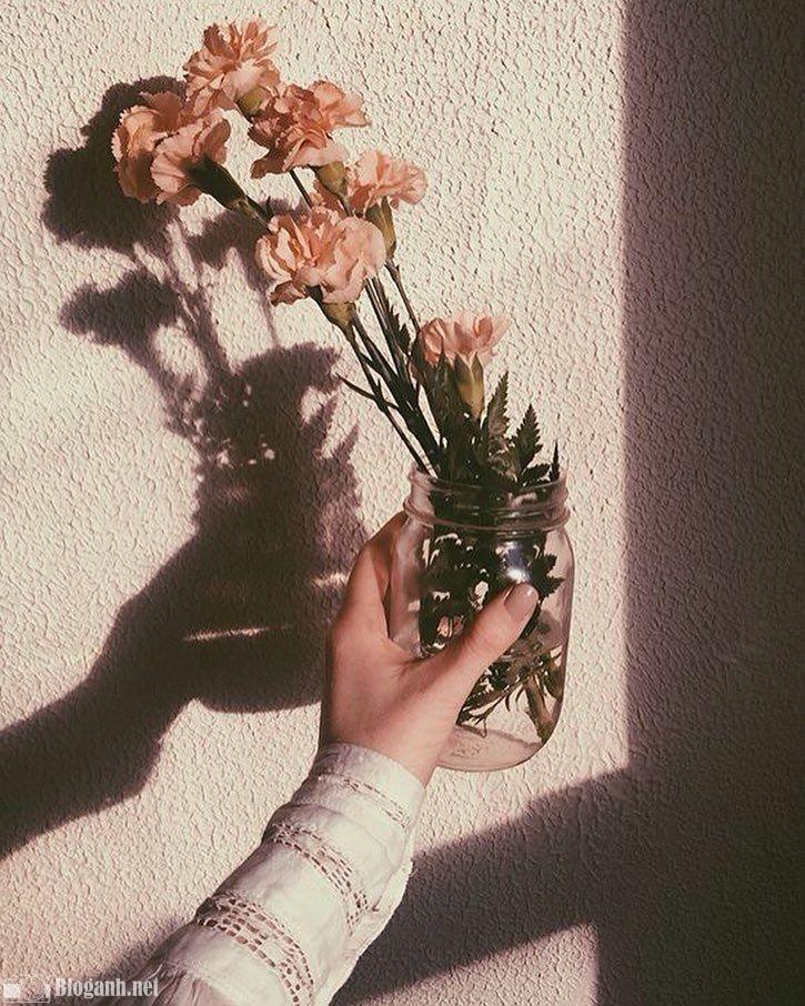 hoa, bàn tay