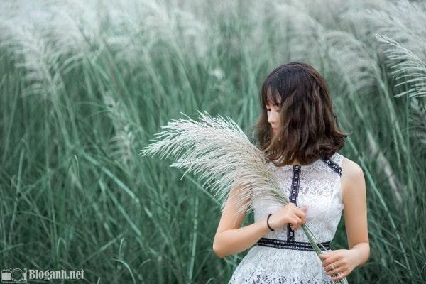 cô gái, cỏ lau