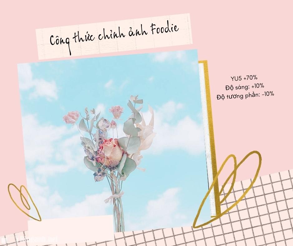 bông hoa, bầu trời