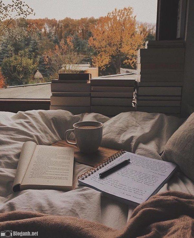 chỉnh ảnh, cafe, khung cửa sổ